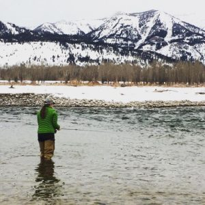 Fly Fishing Guides Jackson Wyoming