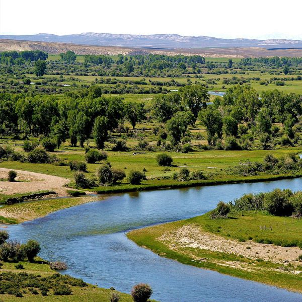 Wyoming Fishing Packages   Reel Deal Anglers