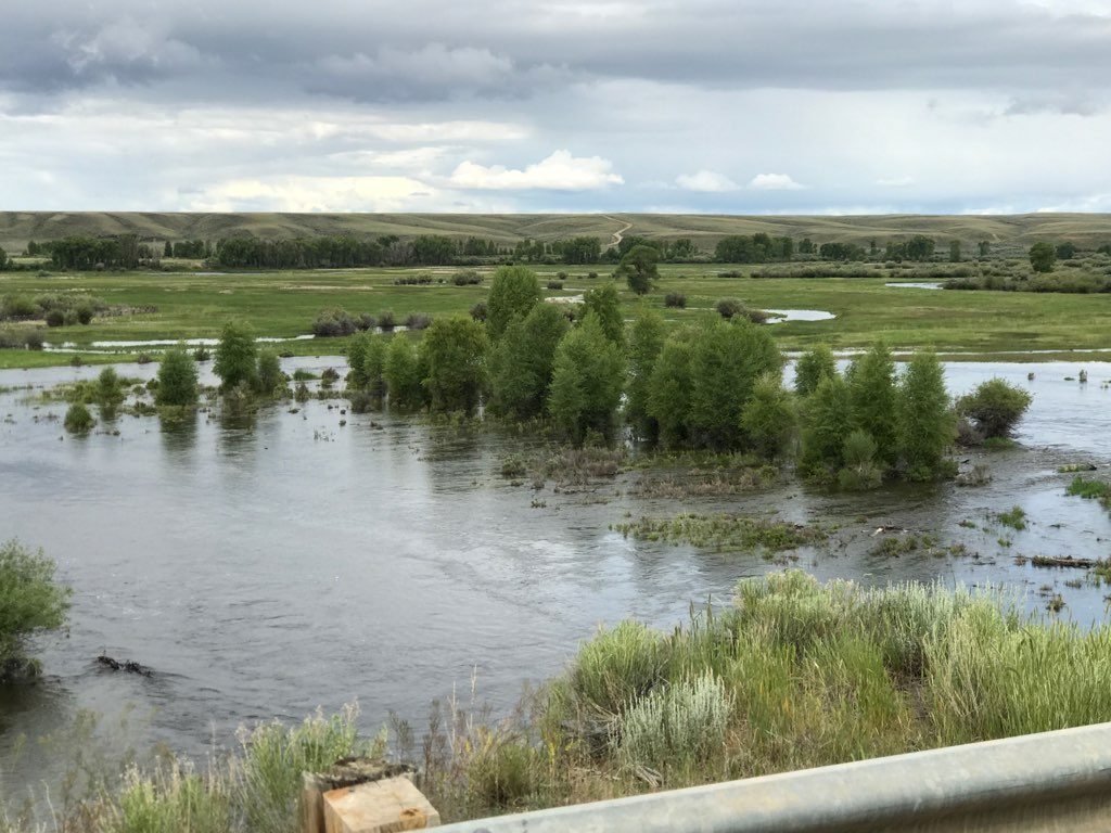 high water once again folks reel deal anglers